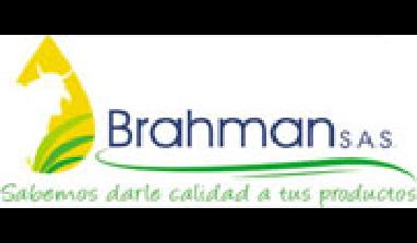 Brahman S.A.S